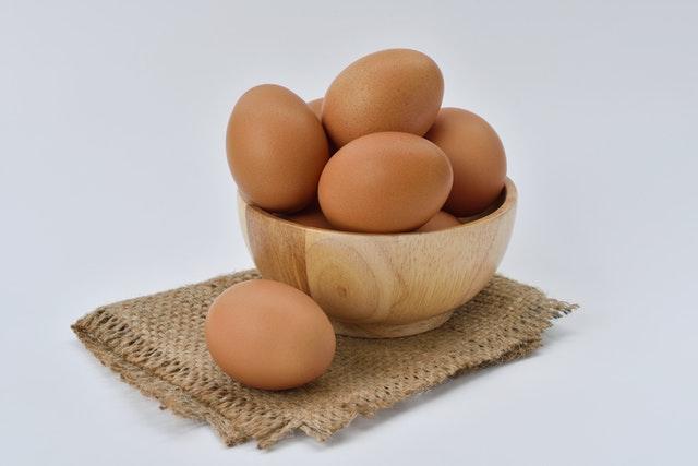 beli telur online
